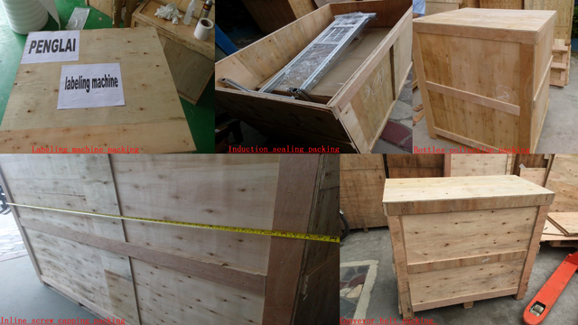 packaging for machinery in wooden case.jpg