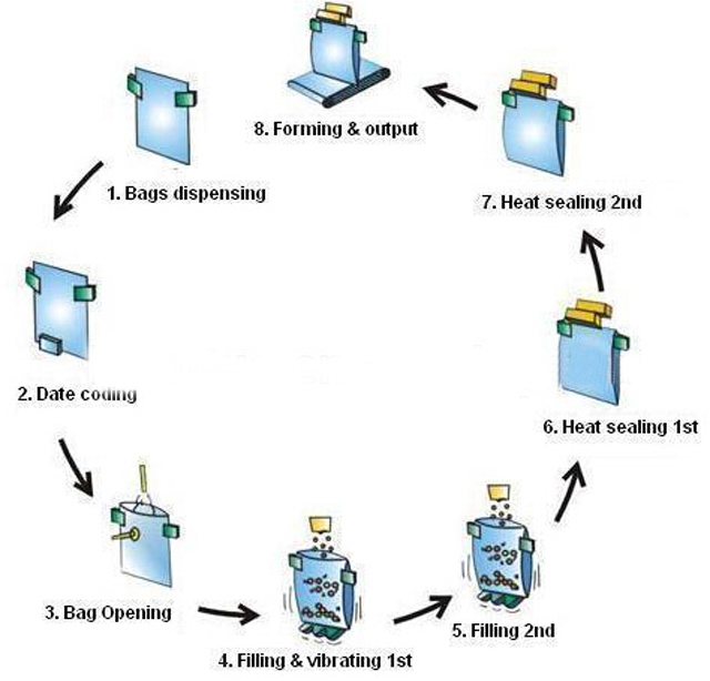rotary packing machine process.jpg
